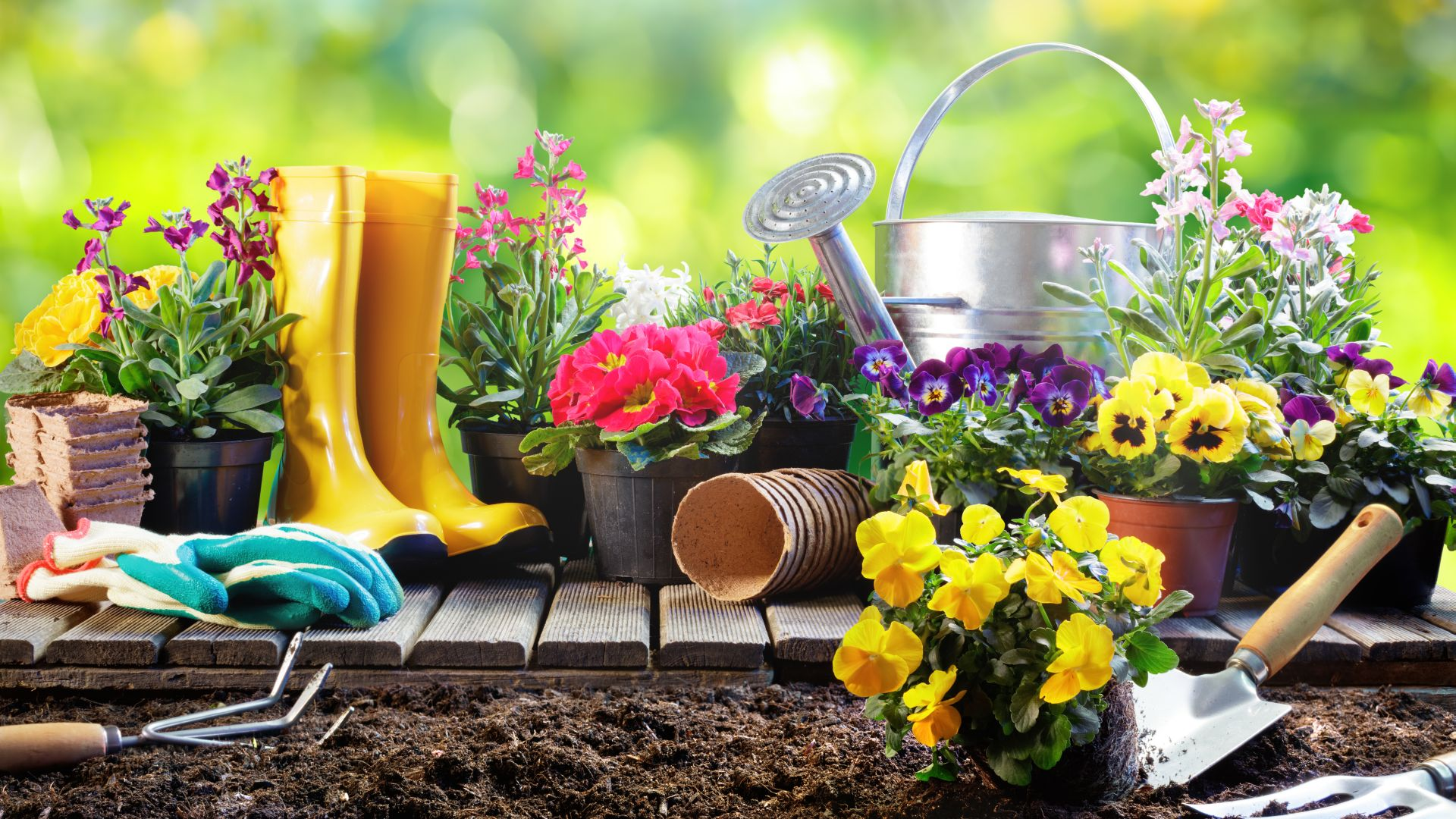 Jak zadbać o porządek w ogrodzie na wiosnę?